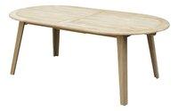 Ocean Table de jardin à rallonge Fitz teck L 200 x Lg 110 cm-Avant