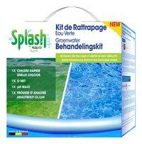 Realco kit de rattrapage eau verte pour piscines avec filtre