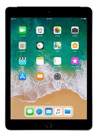 Apple iPad Wi-Fi + Cellular 32 Go gris sidéral-Avant