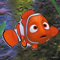 Ravensburger 3-in-1 puzzel Nemo in het aquarium-Vooraanzicht