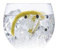 Vin Bouquet Set à cocktail 6 pièces Gin Tonic Botanics-Image 1