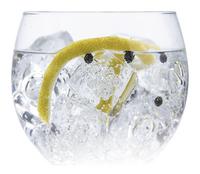 Vin Bouquet 6-delige cocktailset Gin Tonic Botanics-Afbeelding 1