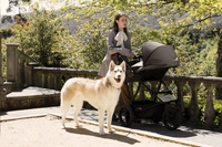 Mountain Buggy Poussette Urban Jungle V3 Luxury collection herringbone-Image 3