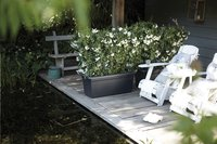 Elho bloembak Green Basics Garden XXL 80 cm zwart-Afbeelding 1