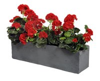 MCollections rechthoekige bloembak L 60 cm-Artikeldetail