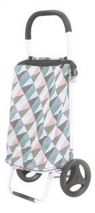 Rixx Caddie Geometric pastel 38 l