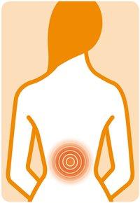 Medisana Coussin de massage shiatsu RBI 88912-Détail de l'article