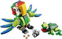 LEGO Creator 31031 Les animaux de la forêt tropicale-Avant