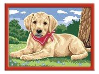 Ravensburger Numéro d'art Adorable Labrador-Avant
