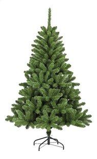 Sapin de Noël Dakota 300 cm-Avant