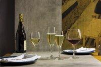 Schott Zwiesel 6 flûtes à champagne Mondial 20,5 cl-Image 1