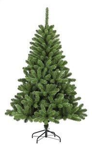 Sapin de Noël Dakota 180 cm-Avant