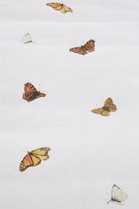 Marjolein Bastin Housse de couette Wings coton 240 x 220 cm-Détail de l'article