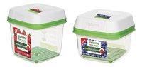 Sistema 2 boîtes de conservation FreshWorks 0,591 l + 1,5 l-commercieel beeld