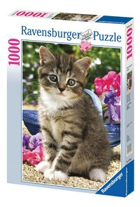 Ravensburger puzzle Chat