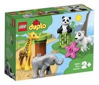 LEGO DUPLO 10904 Les bébés animaux-Côté gauche