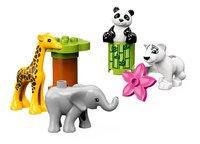 LEGO DUPLO 10904 Les bébés animaux-Détail de l'article
