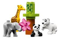 LEGO DUPLO 10904 Les bébés animaux-Avant