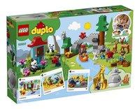 LEGO DUPLO 10907 Dieren van de wereld-Achteraanzicht