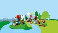 LEGO DUPLO 10907 Dieren van de wereld-Afbeelding 2