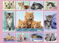 Ravensburger XXL puzzel Schattige katjes-Vooraanzicht