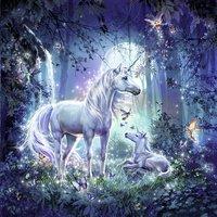 Ravensburger puzzle 3 en 1 Belles licornes-Avant