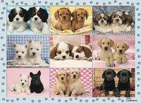 Ravensburger XXL puzzel Snoezige pups-Vooraanzicht