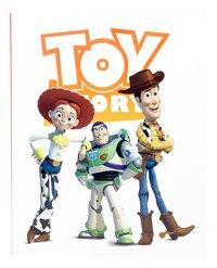 Ringmap A4 Toy Story 4-Vooraanzicht