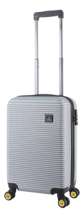 National Geographic Harde reistrolley Abroad Spinner zilver 55 cm