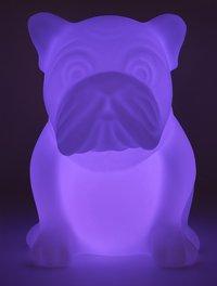 bigben bluetooth speaker hond met lichten wit-Artikeldetail