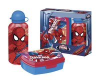 Brooddoos en drinkfles Spider-Man