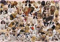Ravensburger puzzel Hondencollage-Vooraanzicht