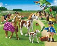 Playmobil Country 5227 Paddock met paardenfamilie -Afbeelding 1