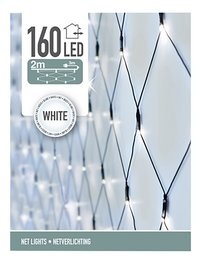 Filet lumineux 160 lampes blanc froid-Avant