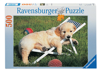 Ravensburger puzzel Golden retriever-Vooraanzicht