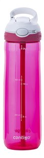 Contigo drinkfles Ashland Sangria 720 ml