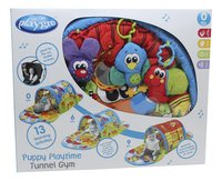 Playgro speeltapijt/tunnel Puppy Playtime Tunnel Gym-Vooraanzicht