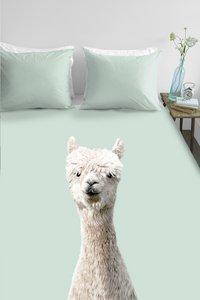 Ambiante Housse de couette Alpaca green coton-Image 2