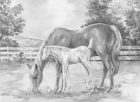 Royal & Langnickel coffret à dessin Esquisser Projets faciles-Détail de l'article