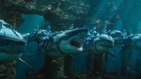 Dvd Aquaman-Afbeelding 4