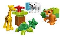 LEGO DUPLO 10801 Les bébés animaux du monde-Avant