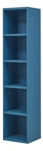Bibliothèque Babel bleu-Côté droit
