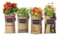 Baza Seeds & Mini Garden Jardin suspendu-Avant