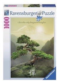 Ravensburger puzzle Attitude Zen
