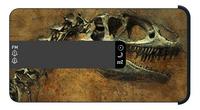 bigben wekkerradio RR16 Dino-Artikeldetail