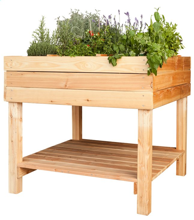 table potager pinus 100 x 100 cm collishop