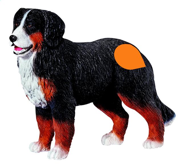 Afbeelding van Ravensburger Tiptoi interactieve figuur Berner Sennen hond from ColliShop