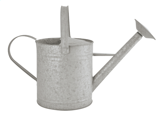 Esschert Design Arrosoir 8,7 l zinc
