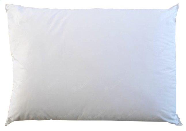 Image pour Mediflow oreiller à eau synthétique 50 x 70 cm à partir de ColliShop