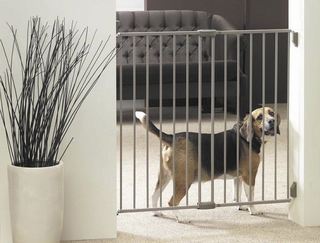 Afbeelding van Hondenhek Dog Barrier indoor from ColliShop